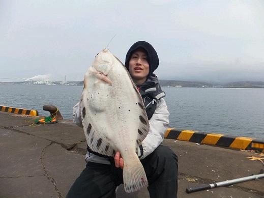 苫小牧漁港区釣りサークル 釣果写真(ソルト)